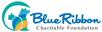 Blue Ribbon Charitable Foundation